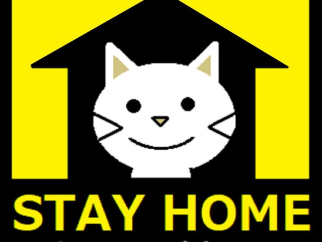 STAY HOME 週間。
