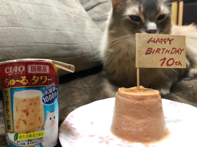 しぐれ君 10歳!!